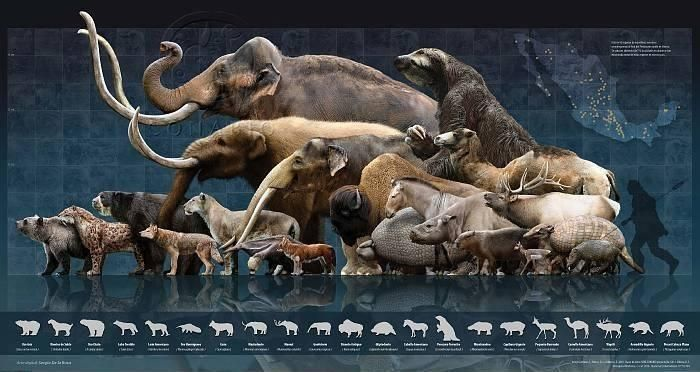 47a81f1bcc8b419b4e87b25649f963b8-extinct-animals-prehistoric-animals